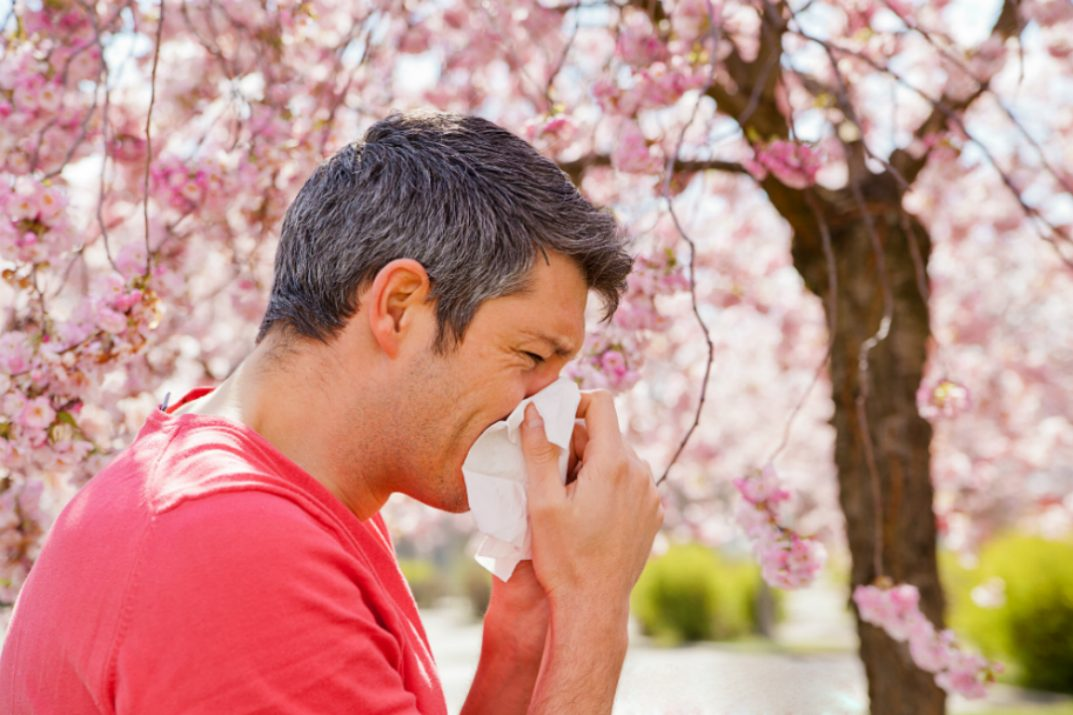 how-to-prepare-for-spring-allergies-1073x715